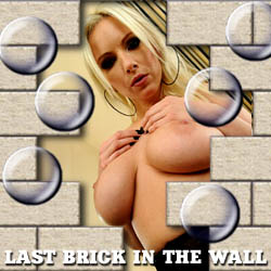 Last Brick in the Wall - mobile strip game