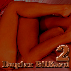 Duplex Billiard-2 adult game