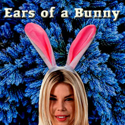 Ears of a Bunny adult game