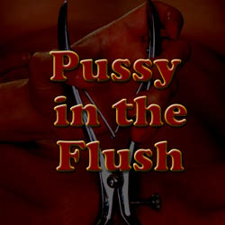 Pussy in the Flush adult game