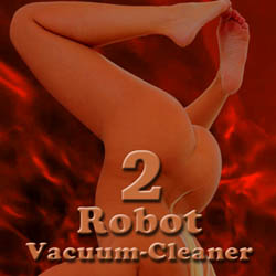 Robot Vacuum-Cleaner - 2 adult game