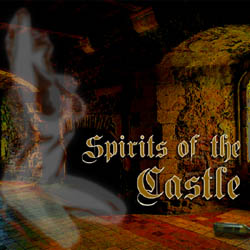 Spirits of the Castle strip mobile game