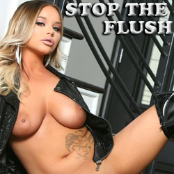 Stop the Flush adult game